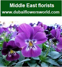 Middle east flower delivery