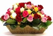 Rose flowers in Basket
